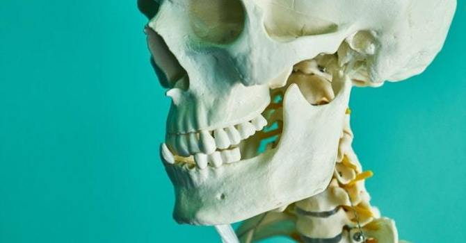 3 Ways to Naturally Boost Your Bone Health image